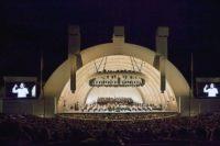 Tangonacht aus der Hollywood Bowl